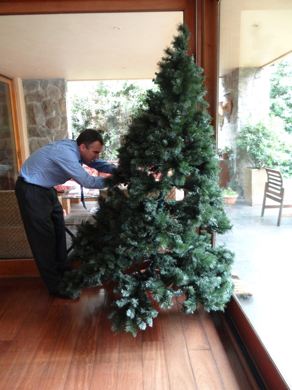 John trying to work miracles on the Christmas Tree