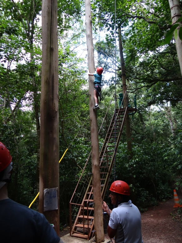 Madie climbing pole