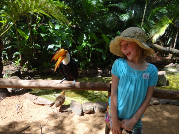 My friend the toucan.